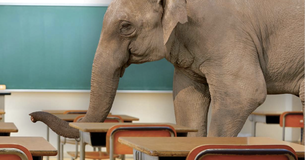 ACHFTS Blog - Image 5 -Elephant In A Classroom Image